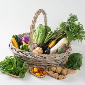 長野の有機野菜セット