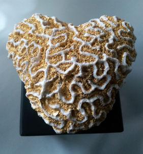 Hirnkorallen in ausgefallenen Formen, z.T. auf Sockel montiert