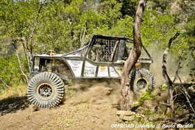 Rubechini-Franceschini, team Evolution 4x4