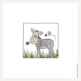 Poster 30x30 cm, friedliche Esel