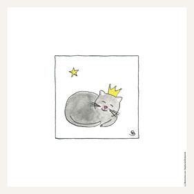 Poster 30x30 cm, schlafende Katze
