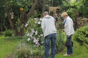 Koestelgarten offener Garten