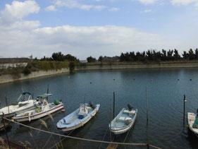 サヨリの釣り場 北九州市門司区