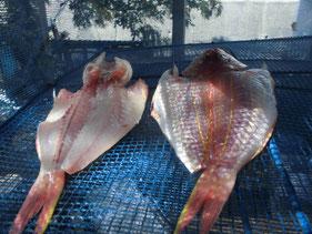 魚の干物の作り方