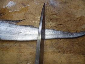 タチウオの尾を切り離す