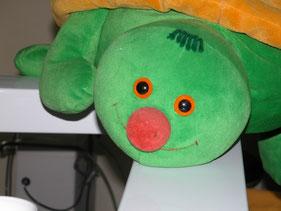 Die Schildkröte Esmeralda passt gut auf die kleinen Patienten auf!