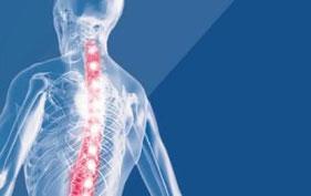 chinesiologo, Valutazione posturale, mal di schiena, postura e movimento