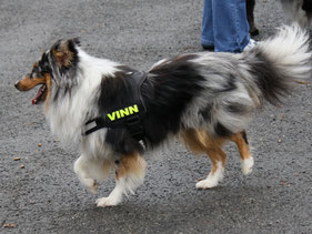 Vinn of Atocha