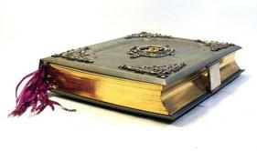 Buch mit Fotografien für den Bezirksvorsteher Alsergrund (grüner Leder-Einband mit Goldschnitt) aus dem Bezirksmuseum Alsergrund gestohlen!
