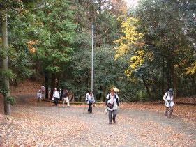 花山院の急坂