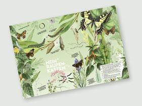 Schmetterling-Plakat / Poster
