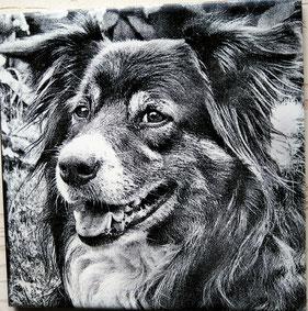 Fotogravur auf Fliese, Leinwand oder Holz