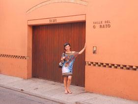 """Neben dem Hotel """"Casa del Curato"""", umgeben von einer Mauer,  um zu leidenschaftliche Fans abzuhalten, finden Sie die """"Casa de Gabriel García Márquez"""", dem berühmtesten Schriftsteller Kolumbiens, wohl auch Lateinamerikas. Márquez starb im April 2014."""