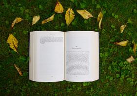 Buch, Lesungen