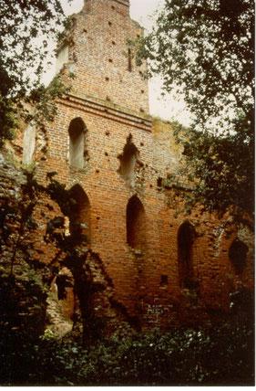 Balga  1998