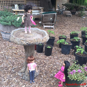 bird feeder, Dianna Effner Little Darling, plant nursery