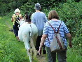 Eselwanderung mit Karel