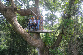 Plataforma Canopy Vista Arenal