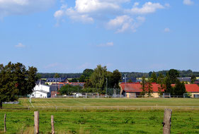 Bild: Seeligstadt 2014