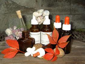 Die Bachblüten sind bei Pferden, Katzen, Hunden, Hasen, Schafen, Rindern, Mäusen und Tieren eine gute natürliche Heilmethode