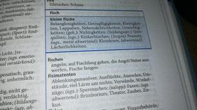 Foto einer Seite aus einem Wörterbuch