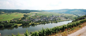 Erden on the Moselle