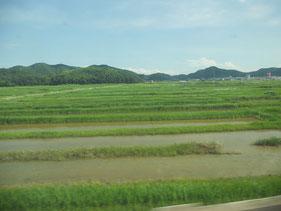 日本の田園風景、好きです。車窓から。