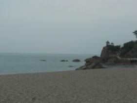 そう、夏に高知に行ったのです。演奏会があり、翌日は一日観光をしました。雨の桂浜。
