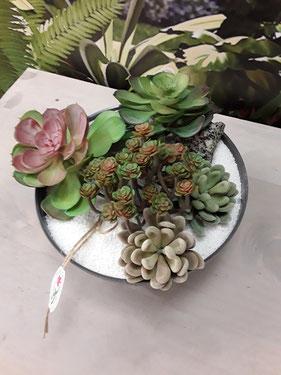 Centro de cactus. 35€