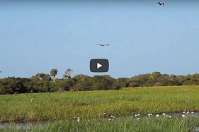 Airboat Safari, Kakadu Nationalpark, Australien