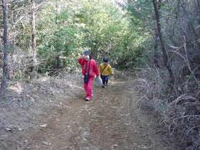 ふれあいの道(木のチップが敷いてあり、歩くとふかふか。)