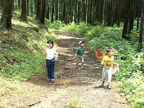 林道なので 道幅は広いです。