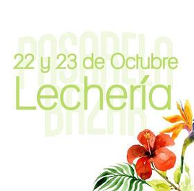 Pasarela Bazar - Lechería / Octubre