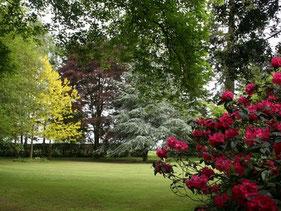 Le Parc à l'anglaise du Parc floral de Digeon - Parcs et Jardins de Picardie