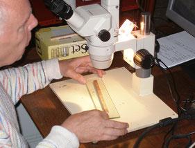 Bestudering van een dendrochronologisch monster.
