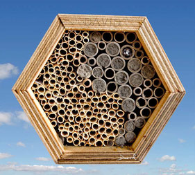 Insektennisthilfe Insektenhotel Nisthilfe Pappröhrchen Strohhalme insect nesting aid insect hotel mason bee straws