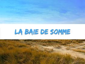baie de somme-picradie-marquenterre-camping-location-vacances-famille-la Haie Penée-tobogan aquatique-salle de sport-mobile home-mer-dune de sable-week end