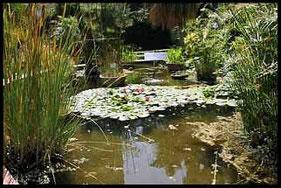 Jardín Botánico de la Universidad de València