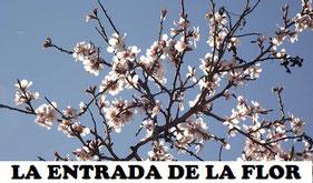La entrada de la Flor, es una tradicional fiesta que se celebra con los almendros en flor en la Comunidad Valenciana.