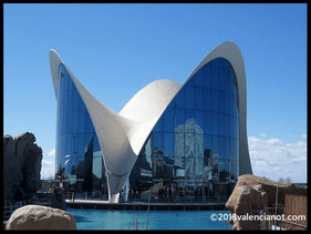 Entrada al Oceanogràfic de Valencia  (Comunidad Valenciana)