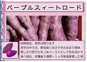 パープルスイートロード紹介pop 和×夢 nagomu farm