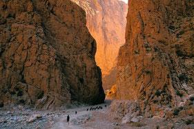 Séjour, voyage, circuit, 4X4, raid, hôtel, bivouac, désert, dunes, Marrakech, Ouarzazate, Zagora