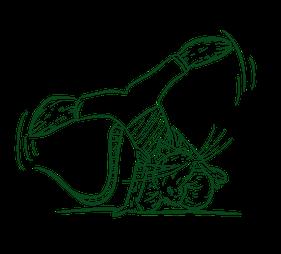 Eine gemalte Buntmaus schlägt ein Rad