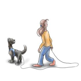 Stressfrei spazieren gehen mit Hund