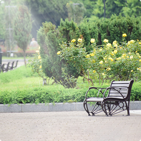 公園のベンチ、癒し