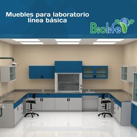 muebles para laboratorio, muebles para laboratorio en Querétaro, gabinetes para laboratorio, vitrinas para laboratorio, campanas para laboratorio