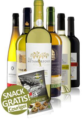 Frühlingsweine Probierpaket | 6-er Weinpaket