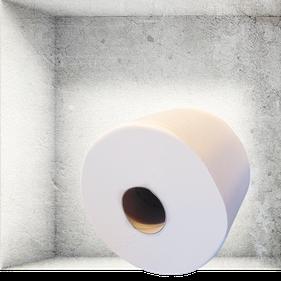 Toilettenpapier-Rolle hygienespender.shop