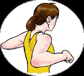2·ゆっくり肩甲骨にそって後ろに反る