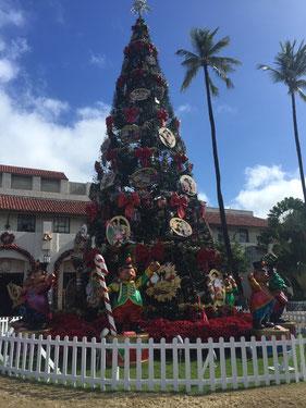 ホノルル シティ ライツ ホノルル市庁舎前 クリスマスツリー